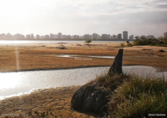 Foto 12: Foz do rio que irriga o mangue em Atalaia Nova Foto tirada em outubro de 2012