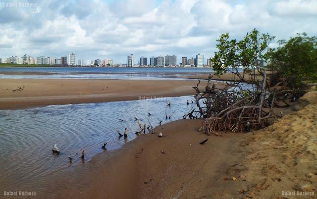 Foto 20: Boca do rio que irriga o mangue Foto tirada em novembro de 2013